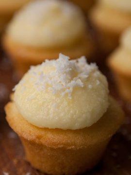 Coconut Cuppies (Cupcakes) - Vanilla recipes - Taylor and Colledge