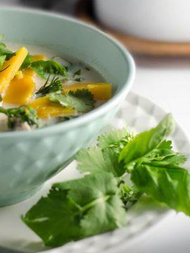 Thai Chicken & Pumpkin Soup - Vanilla recipes - Taylor and Colledge